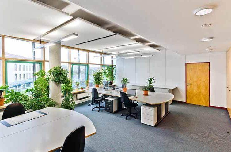 Thiết kế văn phòng xanh giúp mang đến môi trường làm việc trong lành
